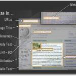 keyword in website code seo