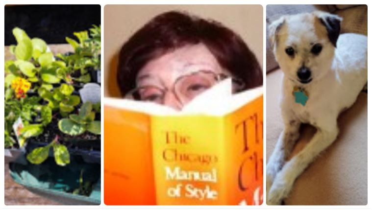 Carol Slott plants reading Charlie